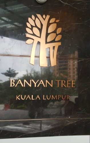 banyan-tree-project1a